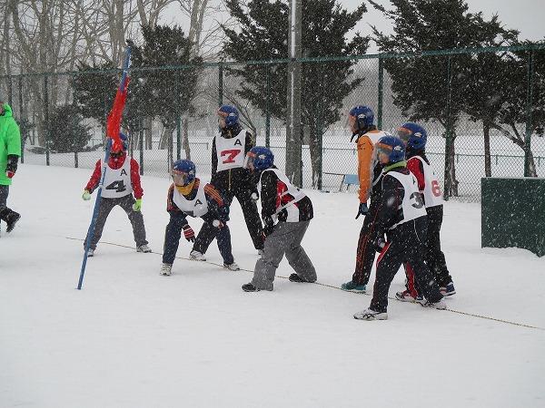 2015-02-01-ハチ-0042
