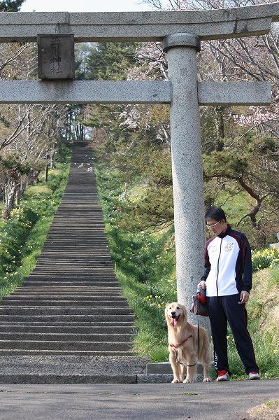 2015-04-29-ハチ-007