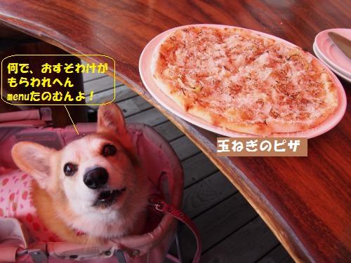 玉ねぎピザと