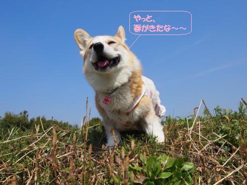 まぶし~withつくし