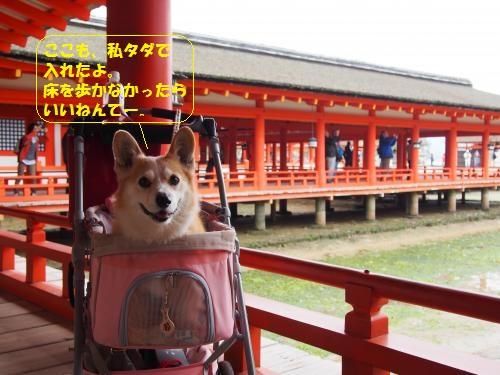 厳島神社の中