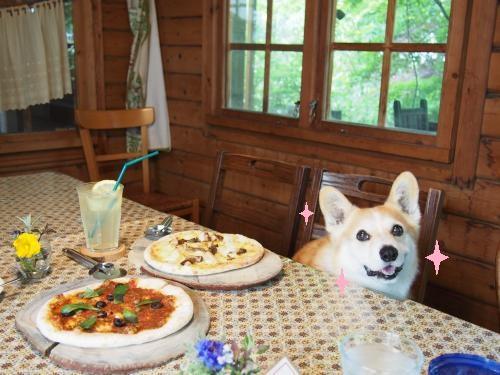 風雅舎でピザと節ちゃん