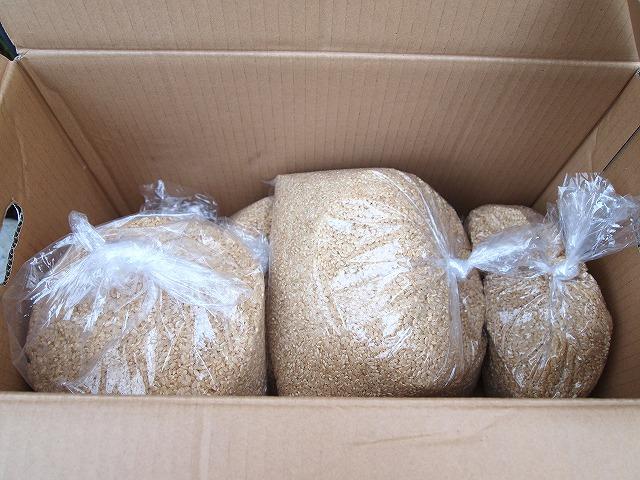 PC212913玄米