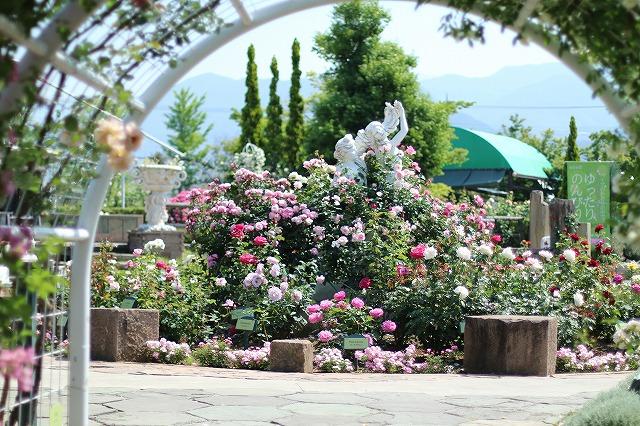 IMG_5191ハーブ庭園