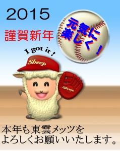 2015mets-crop.jpg