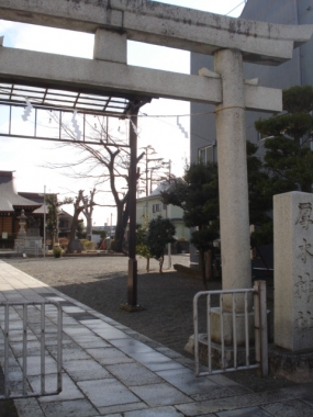 厚木神社さま:1