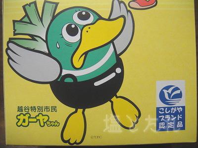 DSC03684_20141226_03_ガーヤちゃんサブレ