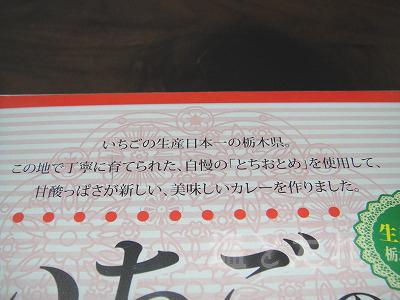 DSC03725_20141228_03_いちごカレー