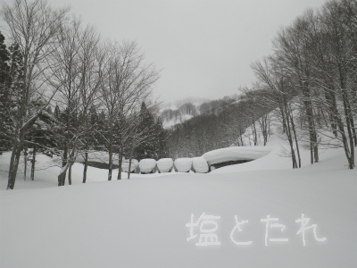 IMGP0013_201501_23_26_入広瀬