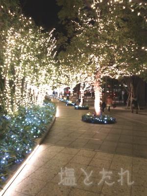 DSC_4035_20150228_02_京都木村屋本店