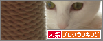 banner (10)