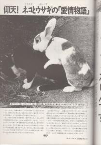yakusoku 65