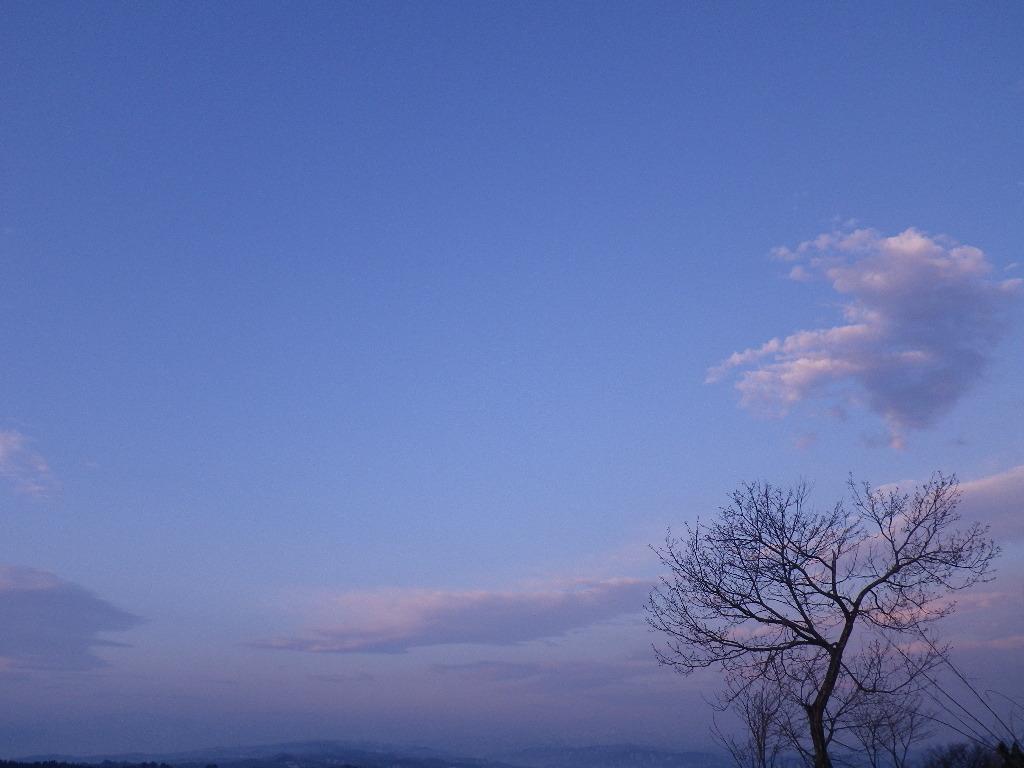 IMGP2436.jpg