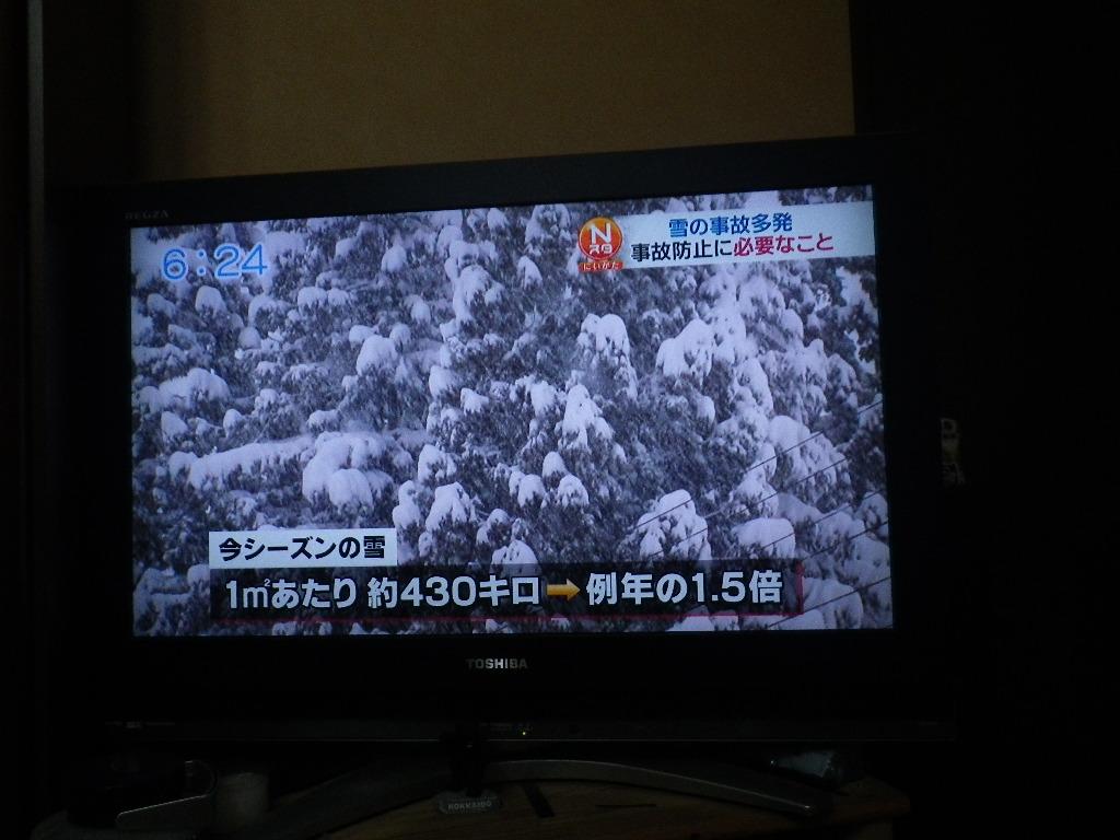 IMGP9065.jpg