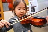 バイオリン (10)