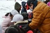 雪の研究 (6)
