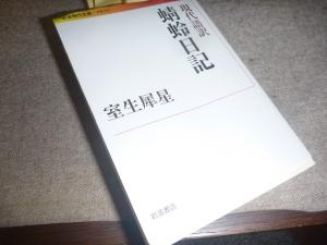 P1090727.jpg