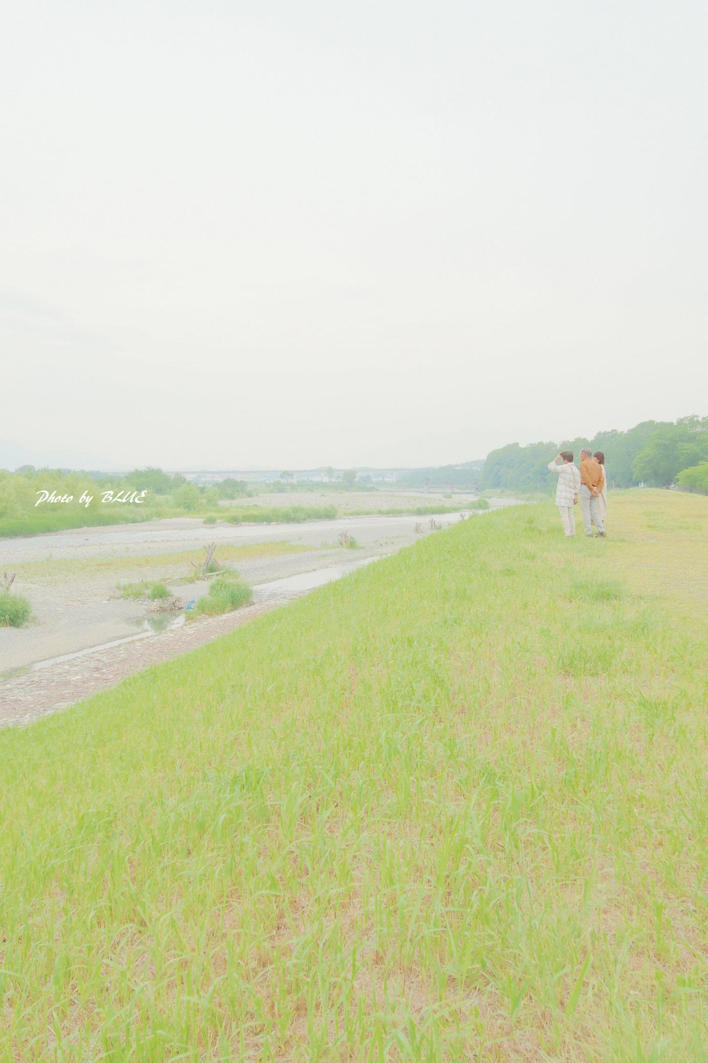 P5290067.jpg