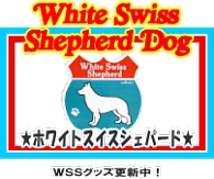 ホワイトスイスシェパードドッグ