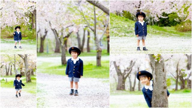 青森県 弘前市 つがる市 入園 入学 卒園 卒業 記念 写真 撮影 ロケ 出張 カメラマン 写真 撮影 桜