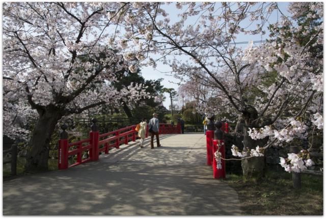 弘前さくらまつり 青森県 弘前市 弘前公園 弘前城 桜 さくら サクラ 観光