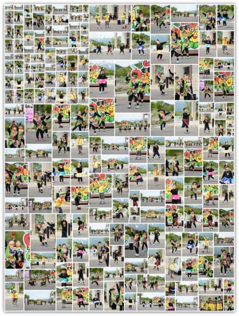 青森県 弘前市 保育所 保育園 幼稚園 カメラマン 出張 写真 撮影 スナップ 写真 インターネット 販売 イベント 行事 祭り 発表会 フリーカメラマン 委託 派遣 同行 出張 写真 撮影