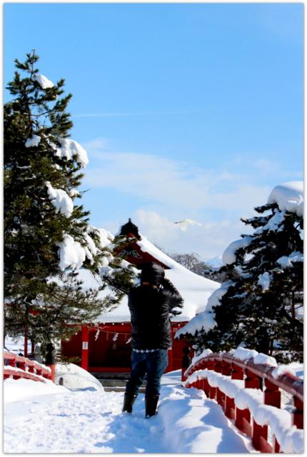 青森県 平川市 猿賀公園 猿賀神社 白鷺 野鳥 ダイサギ 鳥 写真