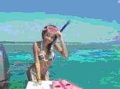 シュノーケル海