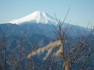 「陣馬山からの富士山」