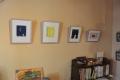 貝の小鳥 壁面ギャラリー1