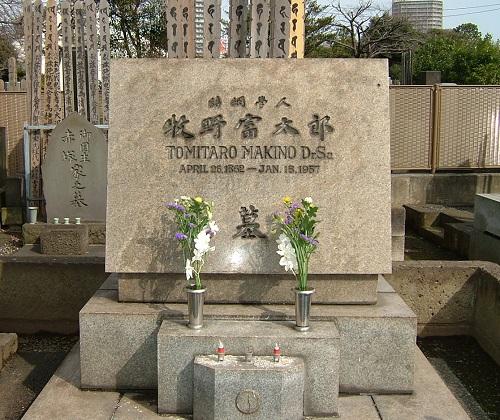 牧野富太郎墓