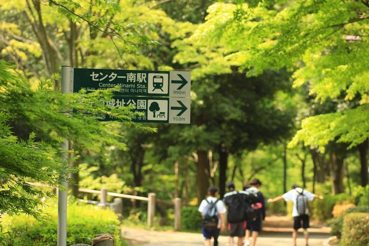 20150425散歩12a