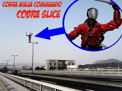 cobra-slice