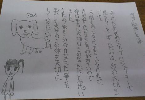 150212-12.jpg