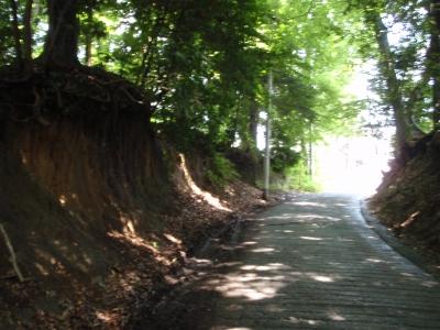 国分寺崖線