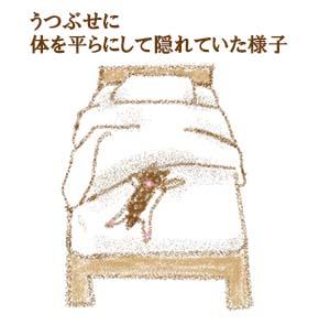 愛猫2号トラウマ