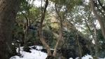 磐鞍山の大きな岩