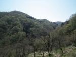 山野の風景