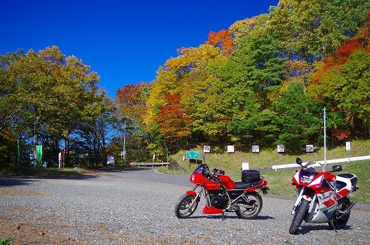長野県 しらびそ峠