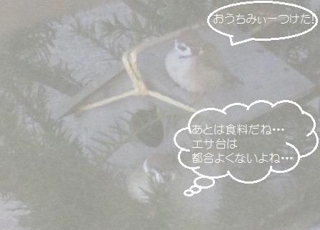 IMG_1676.jpg