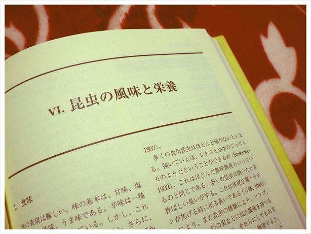 RIMG1036_R.jpg