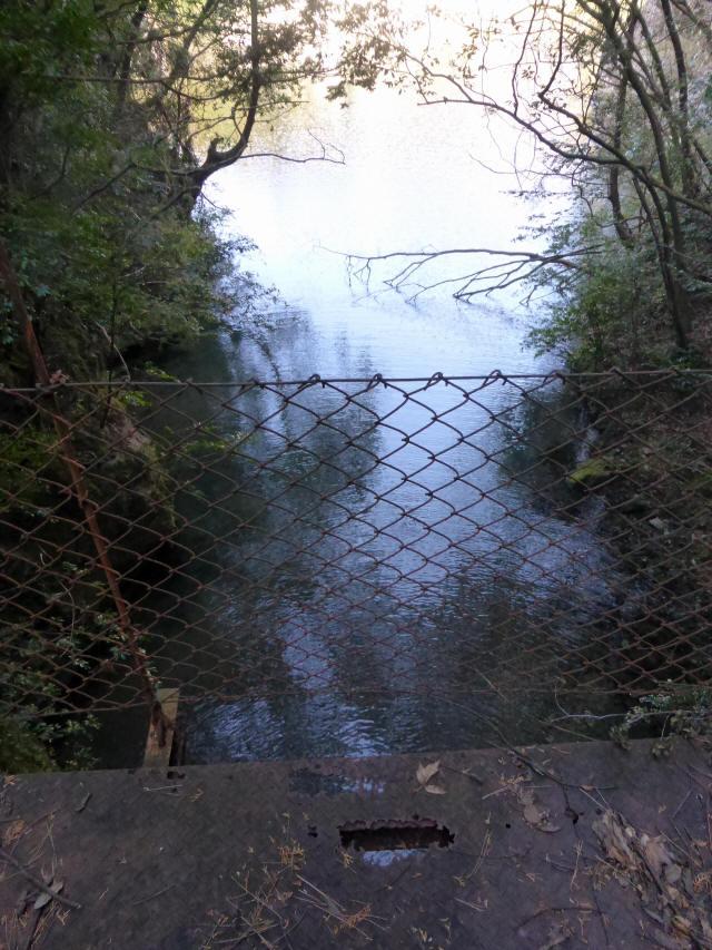 花才谷の吊橋2