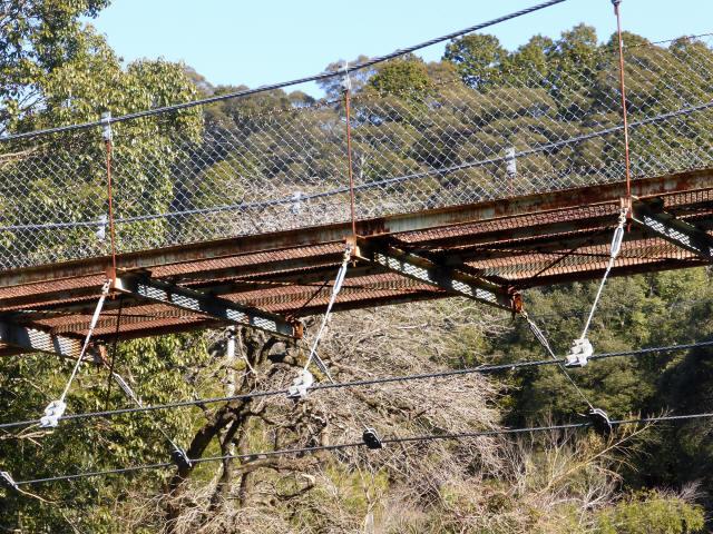 平谷の吊橋0