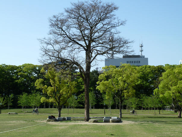 二之丸史跡庭園5