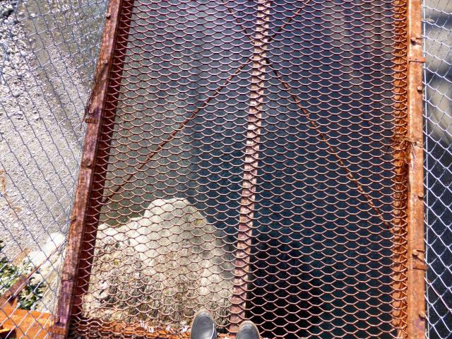 菖蒲野の吊橋3