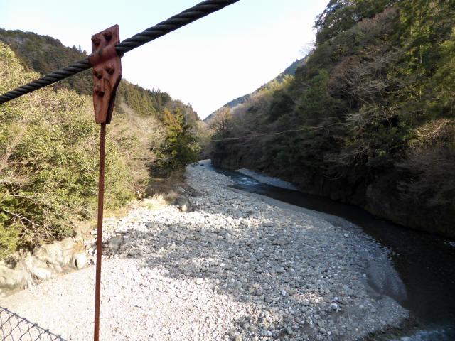 菖蒲野の吊橋7