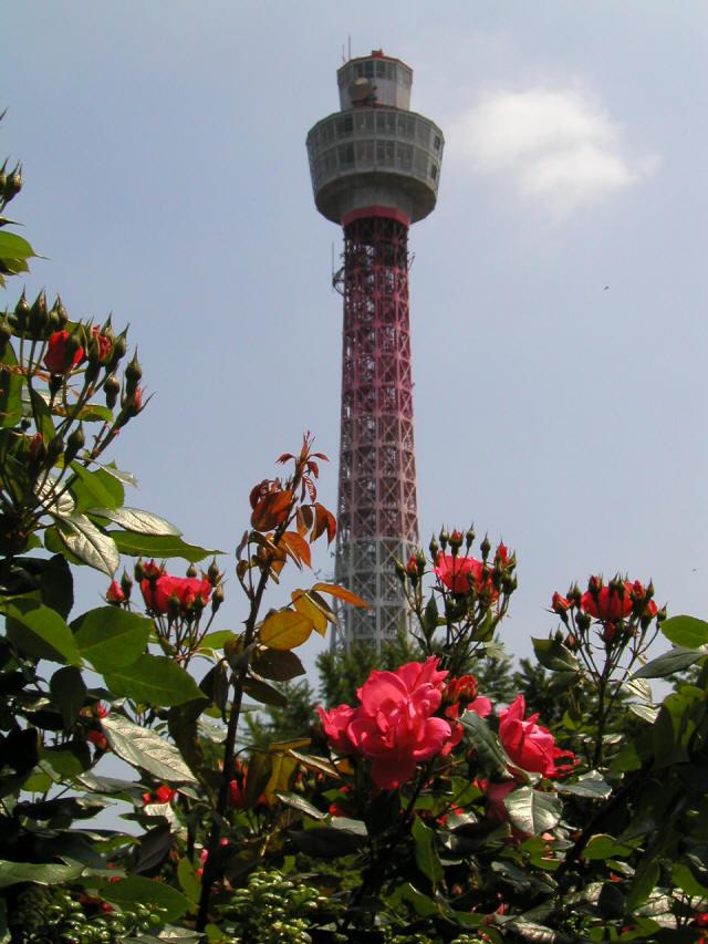 横浜マリンタワー3