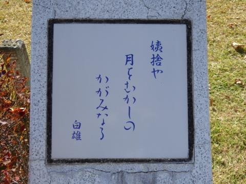 P1010450.jpg