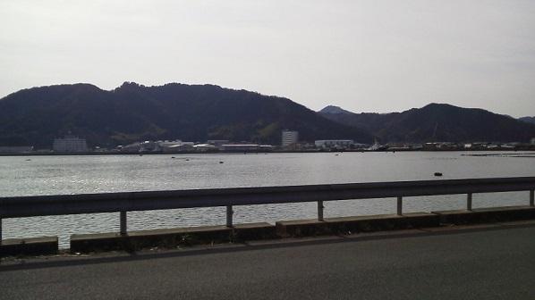 sirasugi (4)