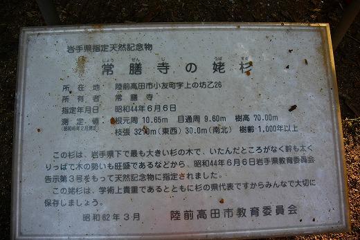 s_DSC2494.jpg